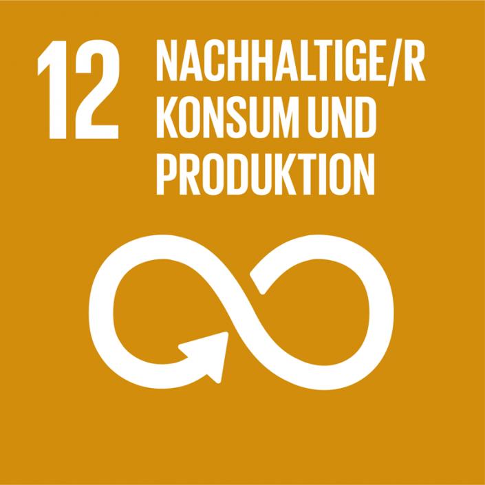 Ziel 12: Nachhaltiger Konsum und Produktion